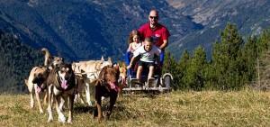 Andorra trineos con perros